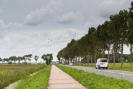 Geen zorgen bij Opmeer ondanks bomenkap voor herinrichting A.C. de Graafweg